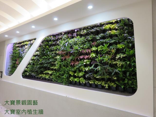 室內植生牆 - [ 室內植生牆 ]-商業空間篇