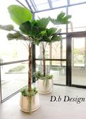 室內.室外庭園植栽 / 設計嚴選: