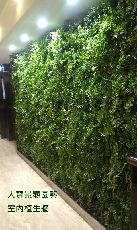 室內植生牆(室內走道) - [ 室內植生牆 ]-商業空間篇