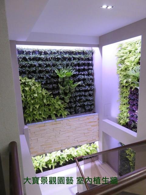 室內植生牆(梯間走道) - [ 室內植生牆 ]-商業空間篇