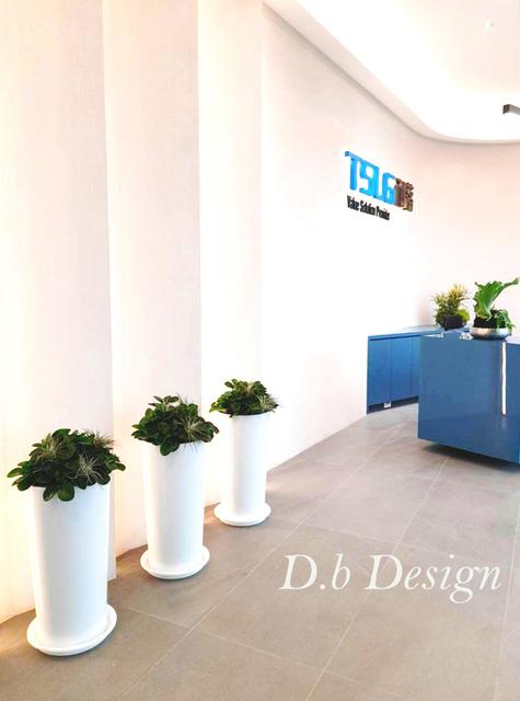 室內植物綠化 / 辦公大樓>大廳櫃台右側 - 室內植物綠化>辦公大樓