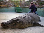 2009/12台南~鱷魚王:1353047366.jpg