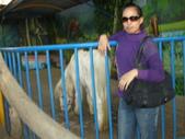 2009/12台南~鱷魚王:1353047371.jpg