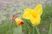 1051015_屏東_千禧公園:SC_004.jpg