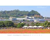 1051120_新社花海:SSF_013.jpg
