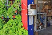 1051112_屏東枋寮車站+F3藝術村+漁港:F_131.jpg