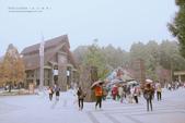 1060225_九族文化村_櫻花祭(雨天):9C_003.jpg