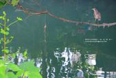 1051015_屏東_千禧公園:SC_019.jpg