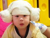 7M-羊角帽:P8220627.JPG