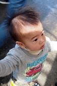中社花園:P2050348.JPG