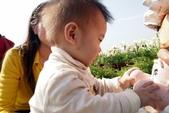 中社花園:P2050384.JPG