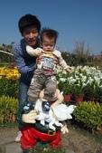 中社花園:P2050376.jpg