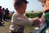 中社花園:P2050380.JPG