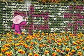 中社花園:P2050374.JPG