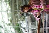1105金門公園黑漆漆:DSCF4368.JPG