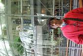 1105金門公園黑漆漆:DSCF4369.JPG
