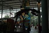 1105金門公園黑漆漆:DSCF4370.JPG