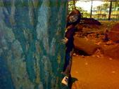 1029Yosemite:20081029472.jpg