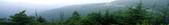 歡迎 台視 「發現新台灣」 專訪 ~:沁心園濃醇香的好紅茶no1 紅茶部落~011.jpg