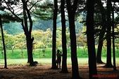 韓國-首爾 仁川 雪嶽山等(2010.08):韓國首爾 仁川 愛寶樂園 水世界 雪嶽山等之旅(20100819-23) 08