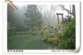 鹿谷-溪頭森林遊樂區:鹿谷-溪頭森林遊樂區(20081206a) 01