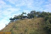 台中-大坑第四登山步道-頭嵙山(2011.01):大坑第四登山步道-頭嵙山 (2011.01) 07