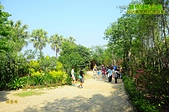 20150426 員林運動公園-2015客家桐花祭活動:_DSC8274.JPG