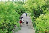 韓國-首爾 仁川 雪嶽山等(2010.08):韓國首爾 仁川 愛寶樂園 水世界 雪嶽山等之旅(20100819-23) 06