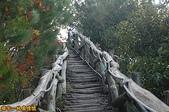 台中-大坑第四登山步道-頭嵙山(2011.01):大坑第四登山步道-頭嵙山 (2011.01) 04