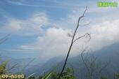 和平-唐麻丹山登山步道(2011.09):和平-唐麻丹山登山步道(201109) 13