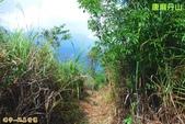 和平-唐麻丹山登山步道(2011.09):和平-唐麻丹山登山步道(201109) 10