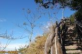 台中-大坑第四登山步道-頭嵙山(2011.01):大坑第四登山步道-頭嵙山 (2011.01) 17