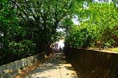 20150426 員林運動公園-2015客家桐花祭活動:_DSC8294.JPG