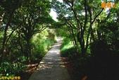 五股 八里-觀音山 硬漢嶺(2011.09):五股 八里-觀音山 硬漢嶺登山步道(201109) 07