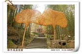 鹿谷-溪頭森林遊樂區:鹿谷-溪頭森林遊樂區-含相框 (20081206a D50+N18-135) 32
