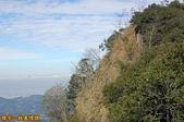 台中-大坑第四登山步道-頭嵙山(2011.01):大坑第四登山步道-頭嵙山 (2011.01) 16