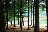 韓國-首爾 仁川 雪嶽山等(2010.08):韓國首爾 仁川 愛寶樂園 水世界 雪嶽山等之旅(20100819-23) 10