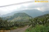 和平-摩天嶺-甜柿的故鄉(2011.09):和平-摩天嶺-甜柿的故鄉(201109) 08