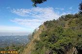 台中-大坑第四登山步道-頭嵙山(2011.01):大坑第四登山步道-頭嵙山 (2011.01) 14