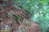 和平-唐麻丹山登山步道(2011.09):和平-唐麻丹山登山步道(201109) 19