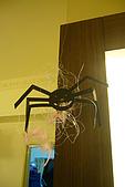 2008-10-31 萬聖變裝趴:口愛的牆角蜘蛛