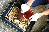 廚餘製作過程:廚餘放入後需壓緊