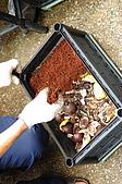 廚餘製作過程:用椰土或泥土將廚餘掩埋