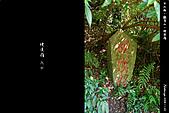 新北市.五股區.觀音山硬漢嶺登山步道:[phil0317] 台北縣五股鄉。觀音山硬漢嶺_8