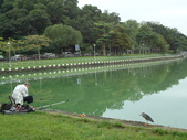 台北市.內湖區.碧湖公園:[liwen2010] DSC05492.JPG