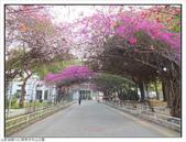 屏東縣.屏東市.中山公園:[fuli19610302] 中山公園 (1).jpg