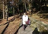 新北市.三峽區.白雞行修宮:[aec810909] P1030084(001).jpg