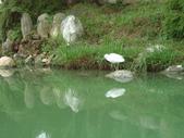 台北市.內湖區.碧湖公園:[liwen2010] DSC05461.JPG