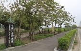 台南市.白河區.小南海自然生態公園:[carriewu0925] 35IMG_3545.JPG