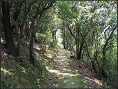 新北市.瑞芳區.長壽嶺登山步道:[fuli19610302] 長壽嶺登山步道